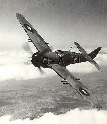 WWII US Press Photo- Royal Navy Airplane Fairey Firefly Carrier Fighter- 1944