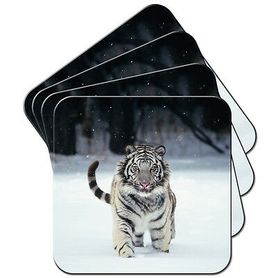White Tiger In Snow Set of 4 Coasters