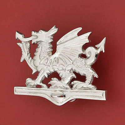 Signature Hardware Welsh Dragon Brass Door Knocker