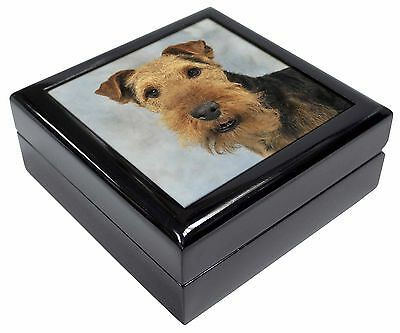 Welsh Terrier Dog Picture Jewellery Box Christmas Gift, AD-WT1JB