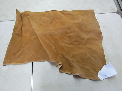 "Moose Hide Native American Dark Color Home Tanned Hide 38"" By 29"" Hard Hide"