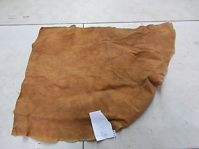 "Moose Hide Native American Dark Color Home Tanned Hide 27"" By 34"" Hard Hide"