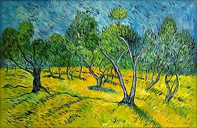 Vincent Van Gogh Olive Orchard Repro, Quality Hand Painted Oil Painting, 24x36in