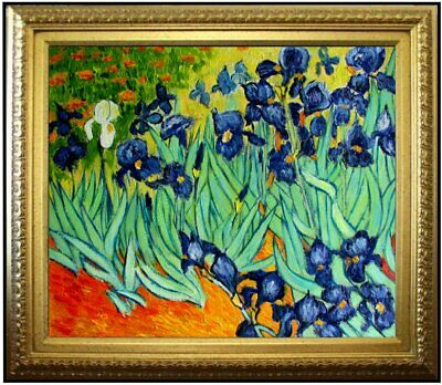 Framed Van Gogh Field with Irises Repro, 100% Hand Painted Oil Painting 20x24in