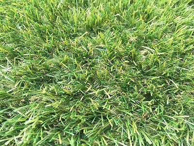 Artificial Grass Mat 30mm Thick - Greengrocers Fake turf Astro Lawn - 2m X 1m