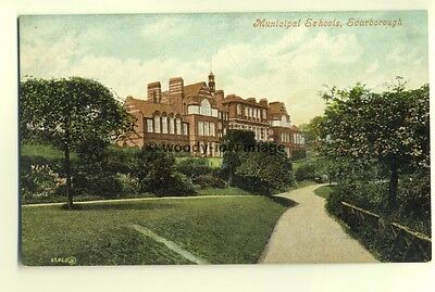 tp6029 - Yorks -  The Municipal Schools and Grounds at Scarborough  - Postcard