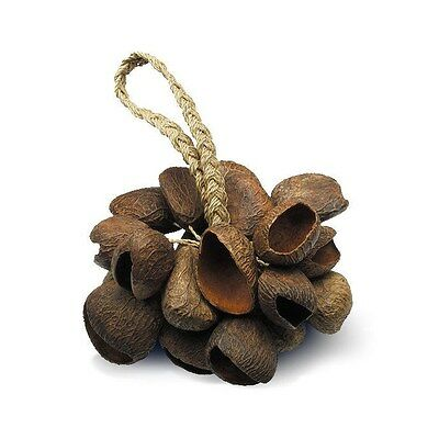 NEW - TOCA Seed Shell Shaker on Rope, #T-SS