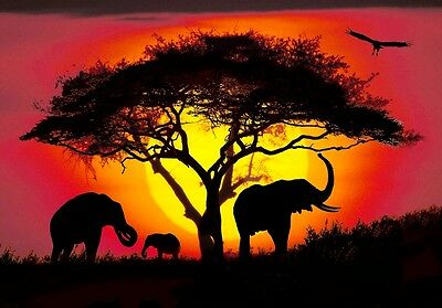 "African Elephant family at Sunset CANVAS ART PRINT poster 8""X10"""