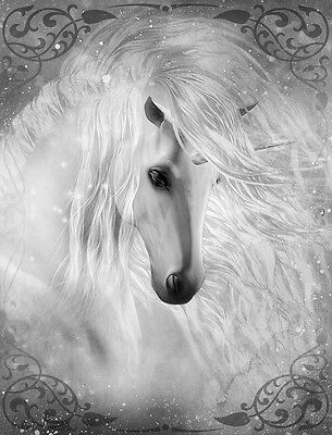 "Beautiful Unicorn Flowing mane CANVAS PRINT horse fantasy poster BW 24""X18"""