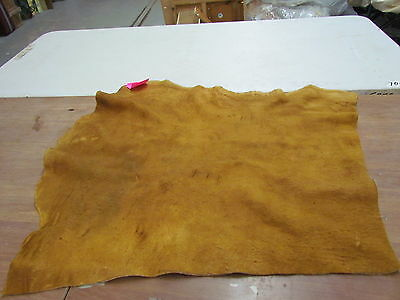"Moose Hide Native American Dark Color Home Tanned Hide 35"" By 32"" Small, Sewing"