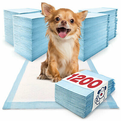 ValuePad Puppy Pads, 17x24 Inch, Small Dog Economy 18 Gram, 1200 Count