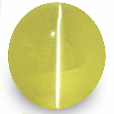 1.52-Carat Eye-Clean Rich Greenish Yellow Chrysoberyl Cat's Eye (IGI-Certified)