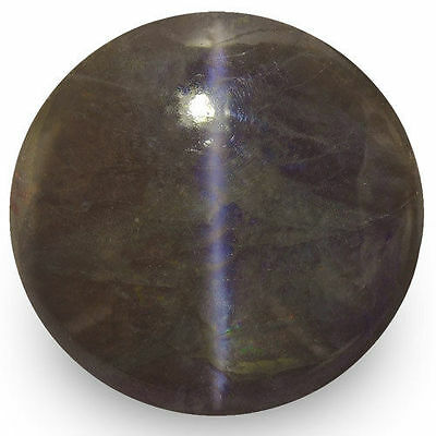 26.26-Carat 16mm Round Chrysoberyl Cat's Eye from Orissa, India (IGI-Certified)