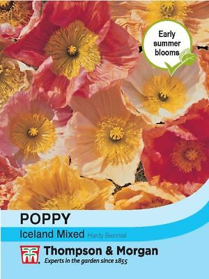 Thompson & Morgan - Flowers - Poppy Iceland Mixed - 2000 Seed