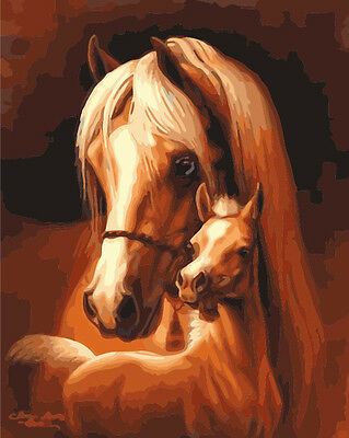 Acrylic Paint by Numbers kit 50x40cm (20x16'') Horses Painting DIY YZ7102