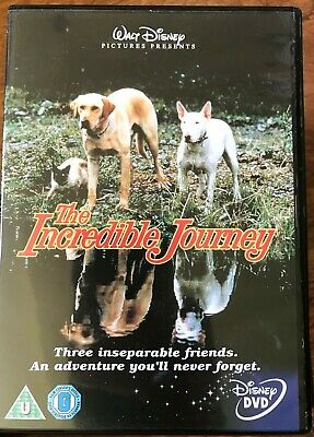 The Incredible Journey DVD Original 1967 Walt Disney Two Dogs & Cat Trek