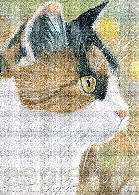 ACEO print limited edition calico cat  by Anna Hoff