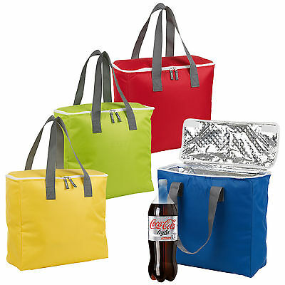 12 Litre Foil Lined Insulated Cooler Freezer Bag Picnic Beach Food Drinks Zipped
