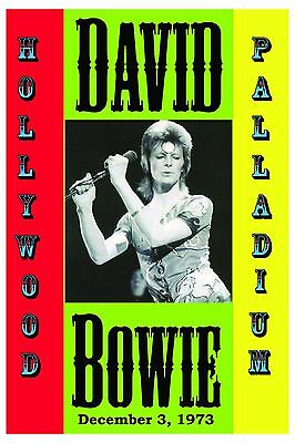 David Bowie at Hollywood Palladium Concert Poster 1973 Large Format 24x36