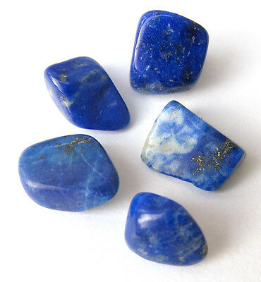 5 pc AA+ Lapis Pyrite Tumbled Polished Healing Crystal Gemstone Stone LOT Chakra