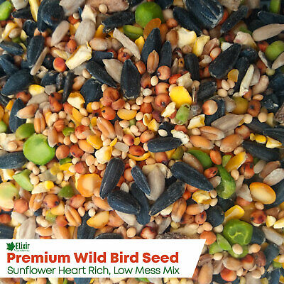 Wild Bird Food/Feed Sunflower Heart Rich Premium Blend High Energy/Low Mess Seed