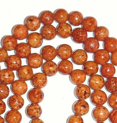GR512f Brown 8mm Round Riverstone Coral Fossil Gemstone Beads 16""