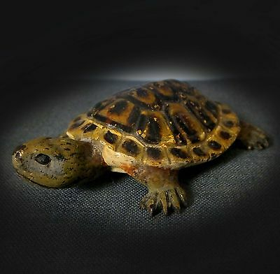 RARE  COLD PAINTED VIENNA BRONZE FIGURINE of a TORTOISE