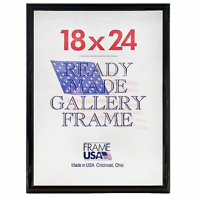 47bed4d32fb DELUXE GOLD POSTER Frame w Plexi-Glass - 15 Sizes to Choose From ...