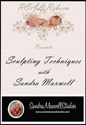 Sculpting Techniques DVD With Sandra Maxwell