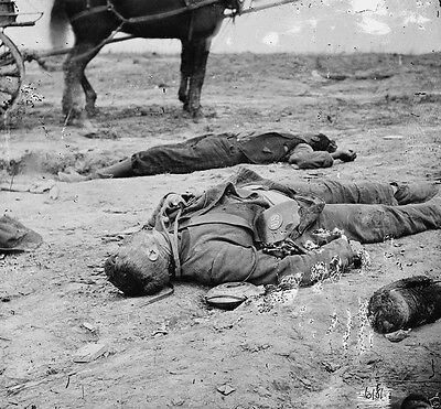 Confederate and Union Dead at Fort Mahone, Virginia 1865-8x10 US Civil War Photo