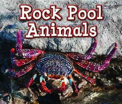 Rock Pool Animals (Animals in Their Habitats) - Paperback NEW Sian Smith (Aut 20