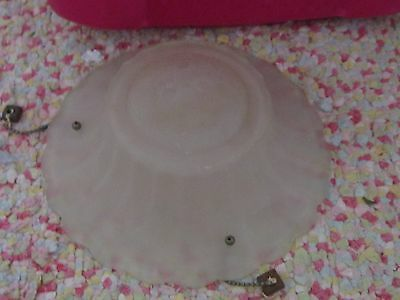 Frosted glass w/ daisy flower garden wildflower design cover light fixture chic