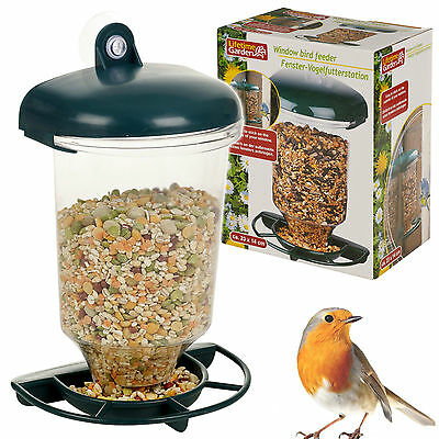 Educational Window Suction Mounted Bird Food Feeding Seed Station Watch Clear