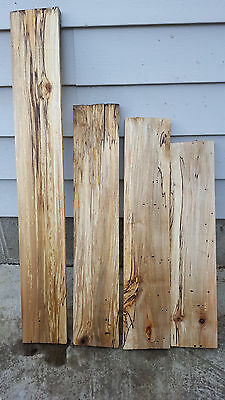 Spalted  Hard maple boards