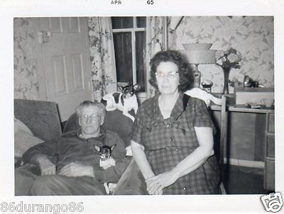Vintage Photograph Mom & Dad With Two Dogs  Dad Is Grumpy