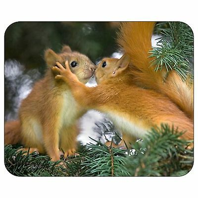 Animals Love Squirrel Mousepad Mouse Pad Mat