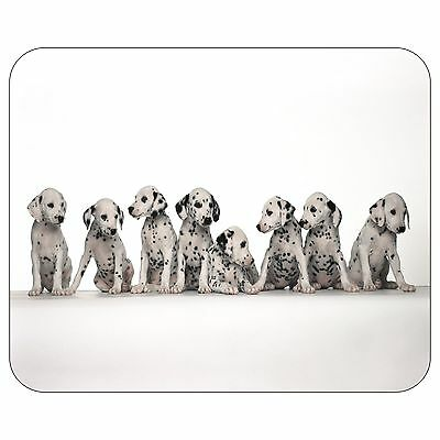 Dalmation Puppies Lined Up Mousepad Mouse Pad Mat