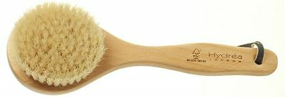 Hydrea London Classic Short Handled Body Brush With Natural Bristle WBH3