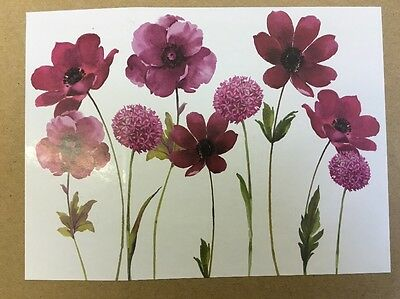 Plum Purple  Flower Floral Canvas Wall Art Picture Wall Hanging