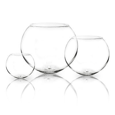 Decorative Glass Bowl CentrePiece Fish Round Balloon Clear Bubble Party Vase NEW