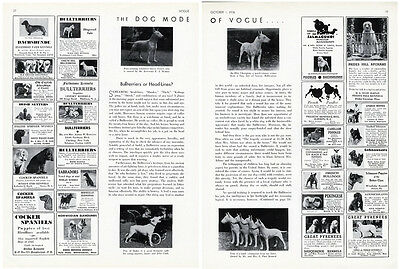BULL TERRIER Article from Vogue 1936 - 3 pages with Photos - Mode of Fashion Dog