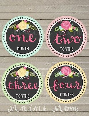 Monthly Baby Girl Stickers Floral Milestone Month Banner Gift Photo Prop Nursery