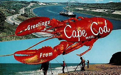 Large Letter Greetings From MA Massachusetts Cape Cod Chrome Postcard