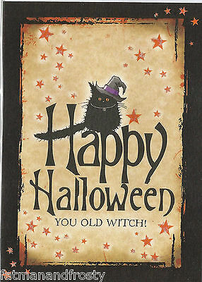 HALLOWEEN CARD You Old Witch Black Cat Witch Hat Glitter Sparkly Halloween Card