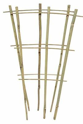 Natural Color Bamboo Trellis 18 inches Tall