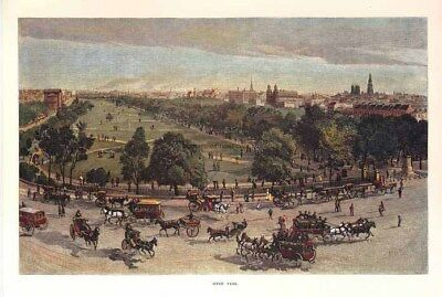 Hyde Park, Sydney... the central traffic hub c1886 with horse-drawn carriages