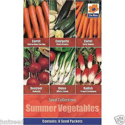 Summer Vegetables 6 varieties Carrots Beetroot Spring Onion Courgette Radish