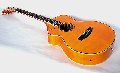 New Ozark 3139L  Left Hand Electric Acoustic Guitar Cutaway Body- Sale Price Off