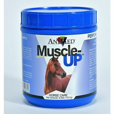 Muscle Up Powder Horse Supplement Supports Healthy Muscles Nerves Circulatory
