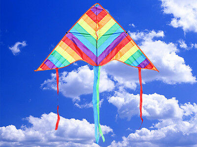 Gunther Childrens Kite Rainbow Colours Easy to Fly Single Line Fun Kids Toy Uk